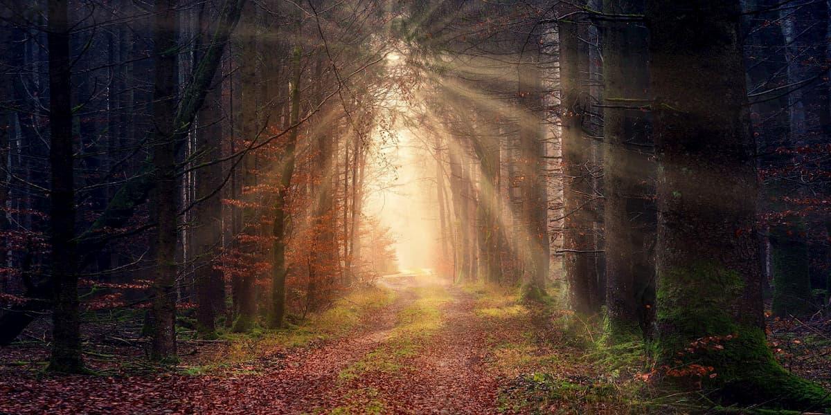 Coronavirus Silver Lining –Life Renewal through Existential Crisis - Celestial Twin Life Mentorship